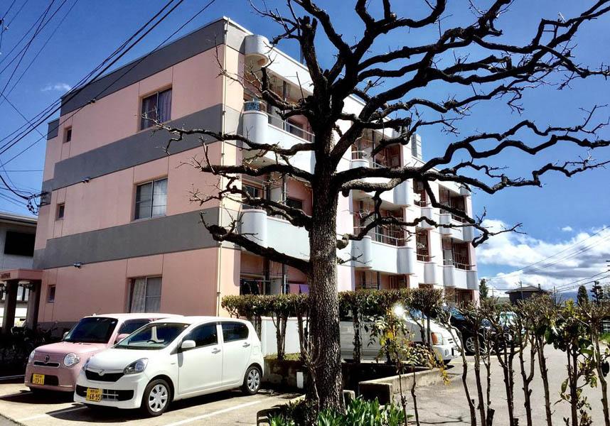 バックパッカーズ ドムス ミワ は、長野にあるエアコン完備の宿泊施設です。善光寺まで1.5km以内、戸隠神社まで20km、長野県信濃美術館 東山魁夷館まで1.2kmです。